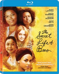 Secret Life of Bees, The (2008)