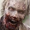 Walking Dead čeká pátá série na Blu-ray. Nikoli však v Česku