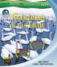 Creatures of the Thaw (2010)